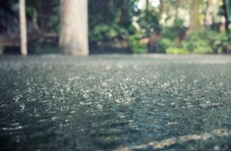 статусы про дождь