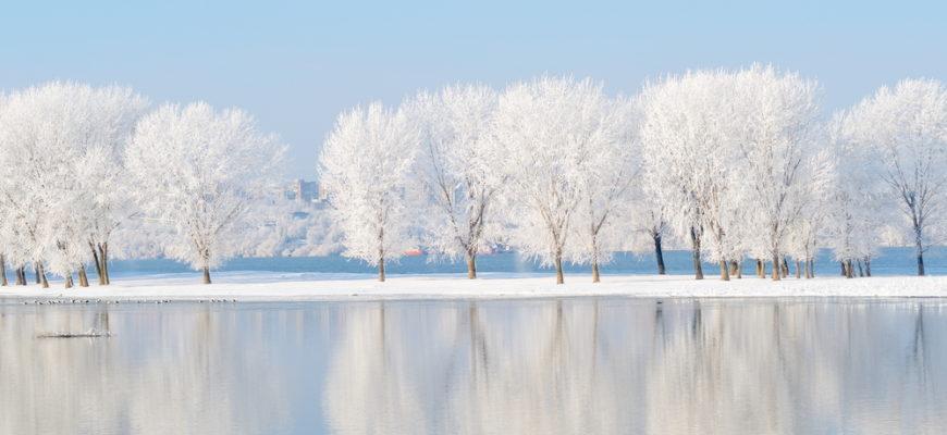 красивые статусы про декабрь