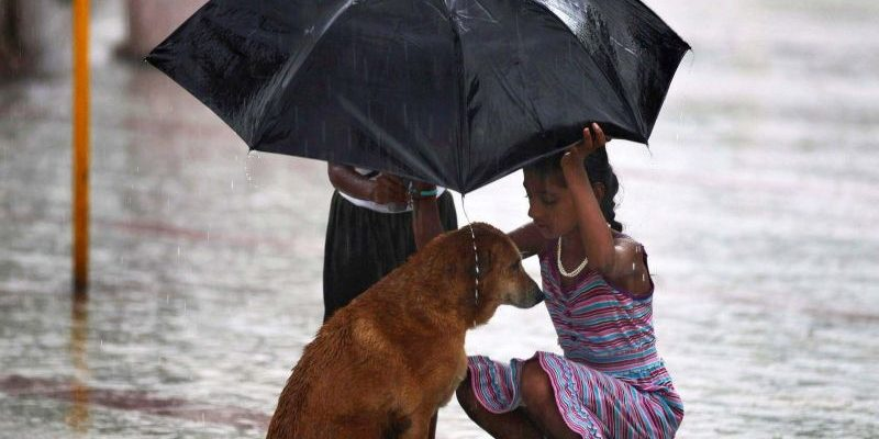 статусы про доброту