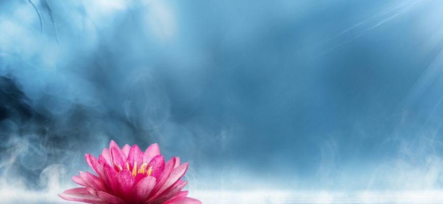 Статусы про красоту души