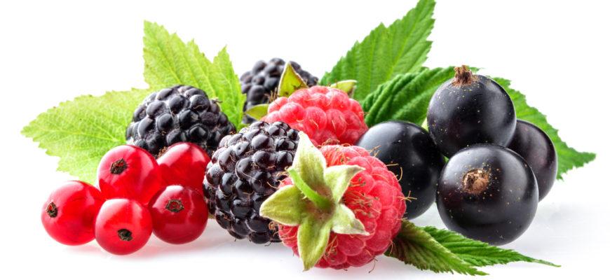 Статусы о ягодах