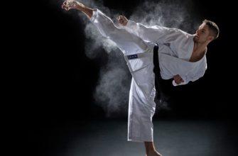 Статусы про карате
