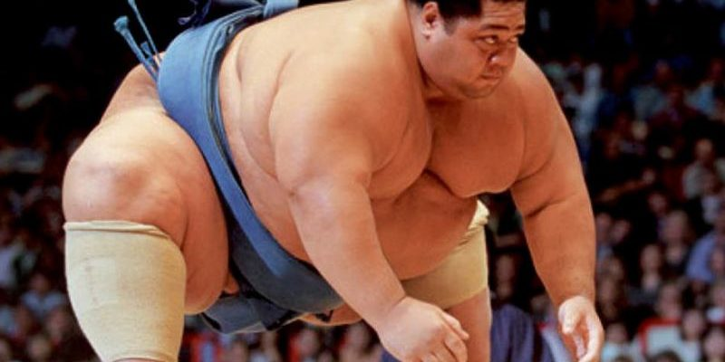 Статусы про сумо