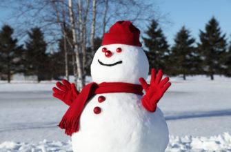 статусы про снеговика