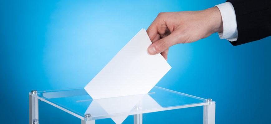 статусы про выборы